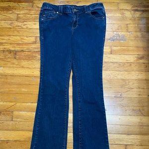 Lane Bryant Genius Fit Jeans